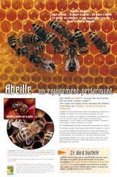 Abeilles (Les) | COMVV