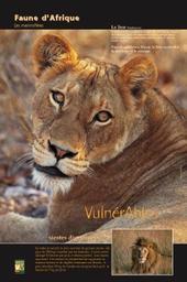 Faune d'Afrique | COMVV